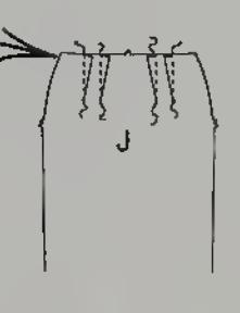 Stitch darts on Skirt Front J and Skirt Back K
